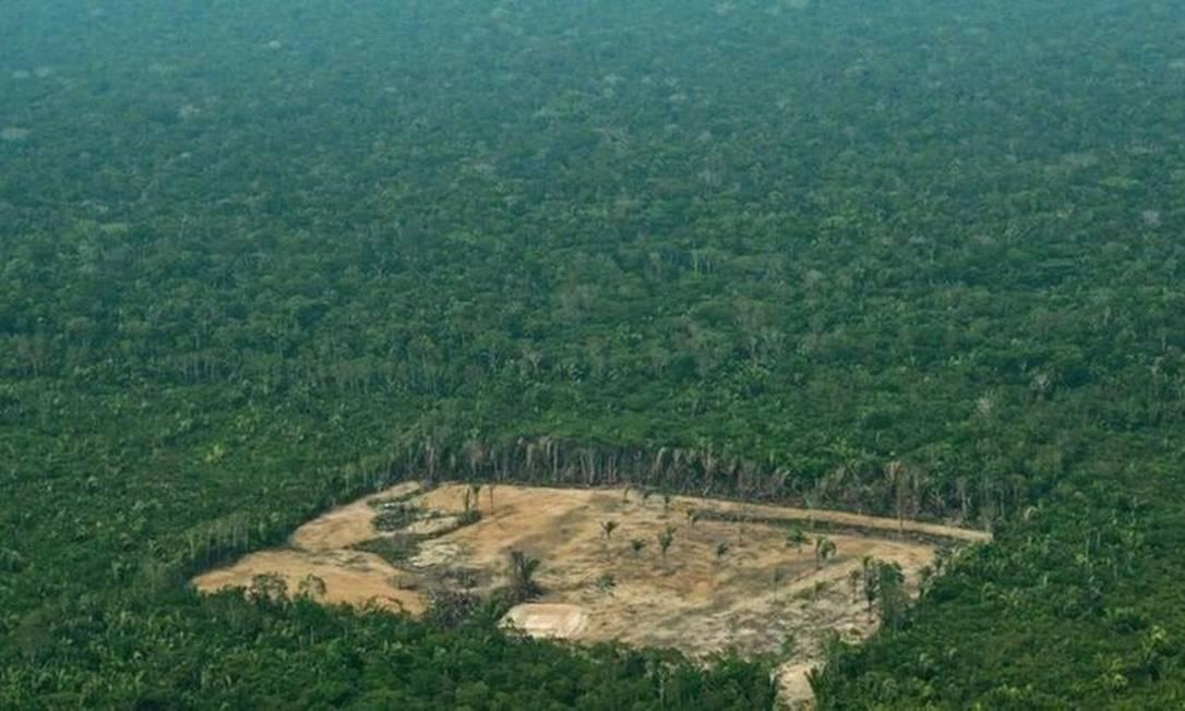 Ambientalistas dizem que aprovação da proposta de Irajá alimentaria a grilagem de terras, uma das principais causas para o desmatamento na Amazônia Foto: AFP