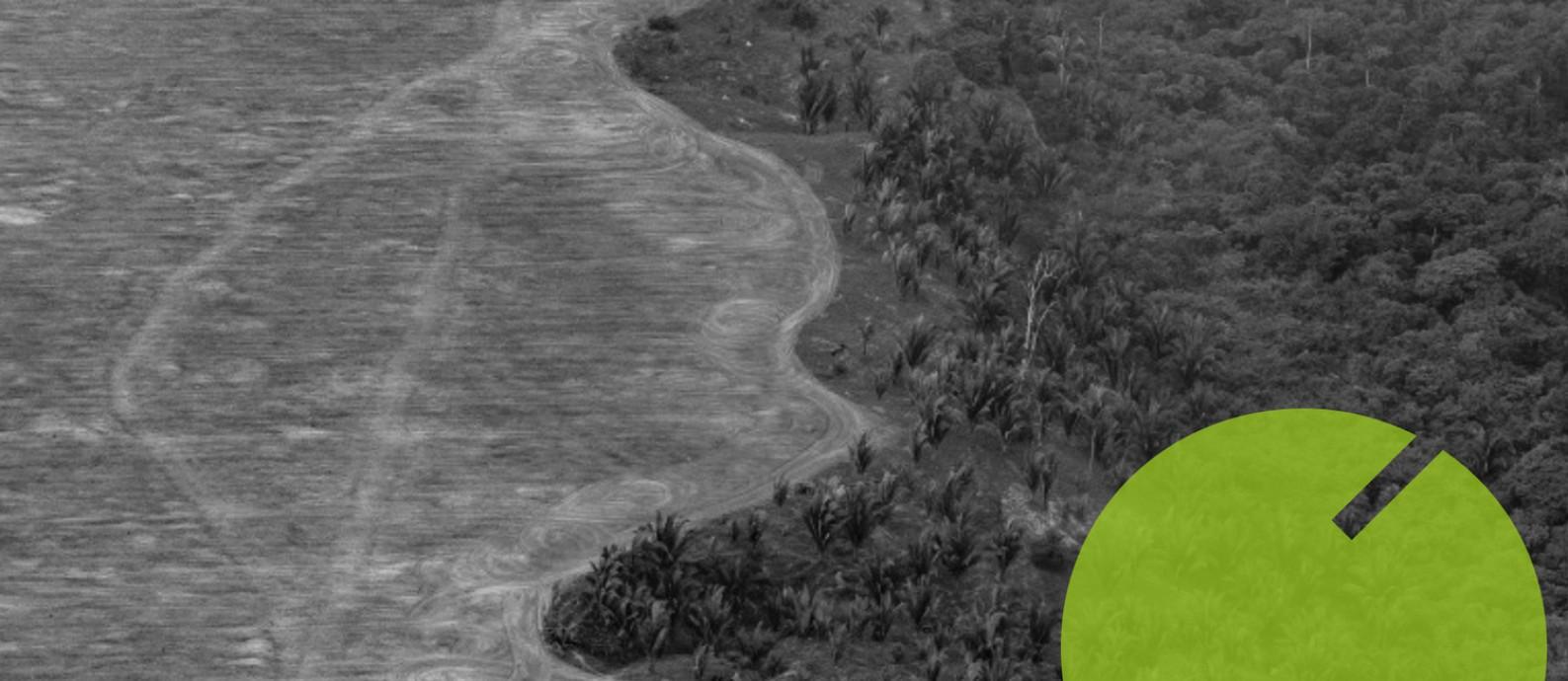 Expansão de fazenda em área de queimada no Mato Grosso: governo afirma que precisa de mais recursos para fiscalizar a Amazônia Foto: VICTOR MORIYAMA/NYT/31-8-2019 / Arte O Globo