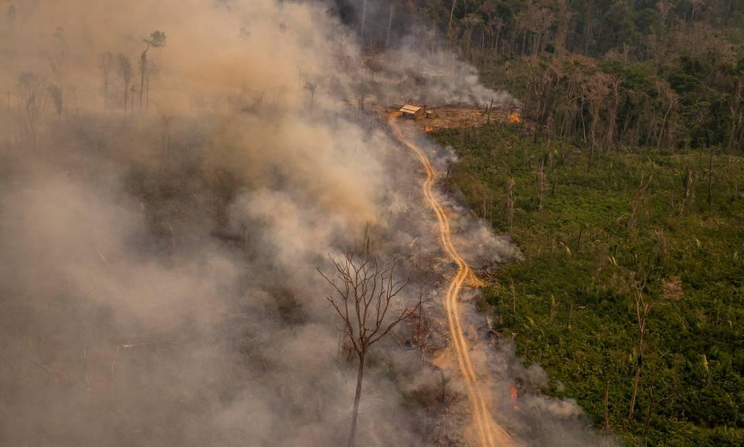 Queimada da floresta Amazônica em Rondônia Foto: Christian Braga / Agência O Globo