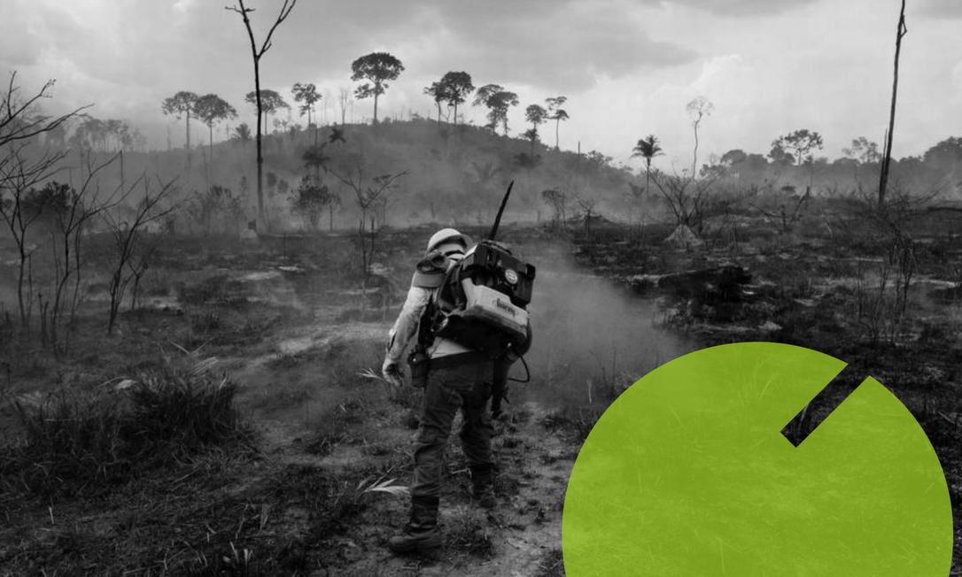 Funcionário do IBAMA cercado por devastação em área de floresta no Pará (03/09/2019) Foto: NurPhoto / NurPhoto via Getty Images