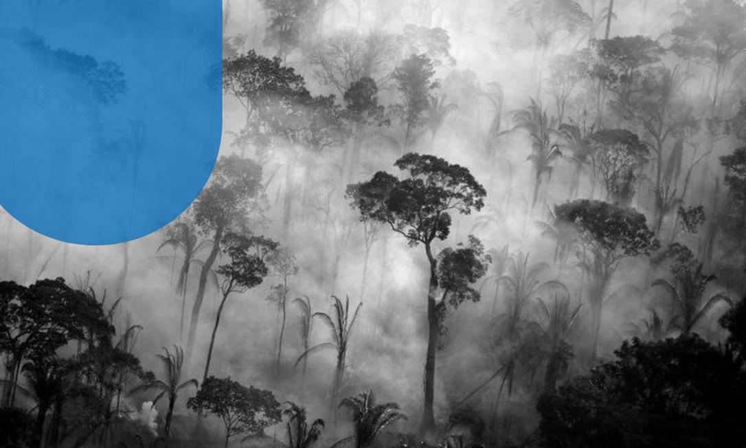 Brasil chega a encontro multilateral pressionado a reduzir desmatamento na Amazônia Foto: Reuters