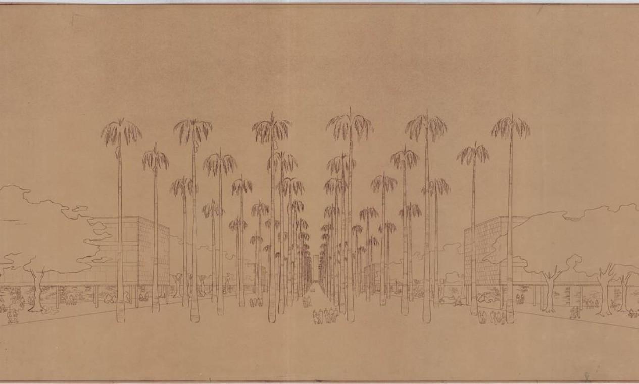Projeto de Lúcio Costa e equipe para cidade universitária na Quinta da Boa Vista, de 1939 Foto: Acervo do Núlceo de Pesquisa e Documentação da Faculdade de Arquitetura e Urbanismo da UFRJ