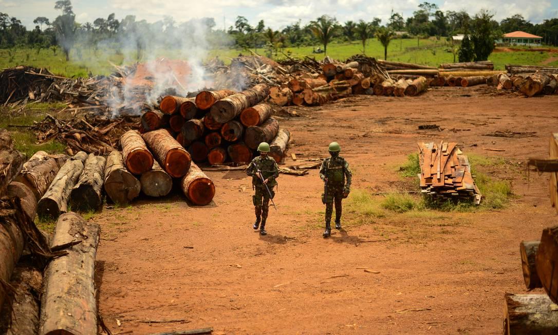 Pirataria. Homens do Exército em operação para apreender madeira ilegal em Porto Velho: identificação do que é irregular ou não é feita por pesquisadores Foto: Cb Estevam / CComSEx