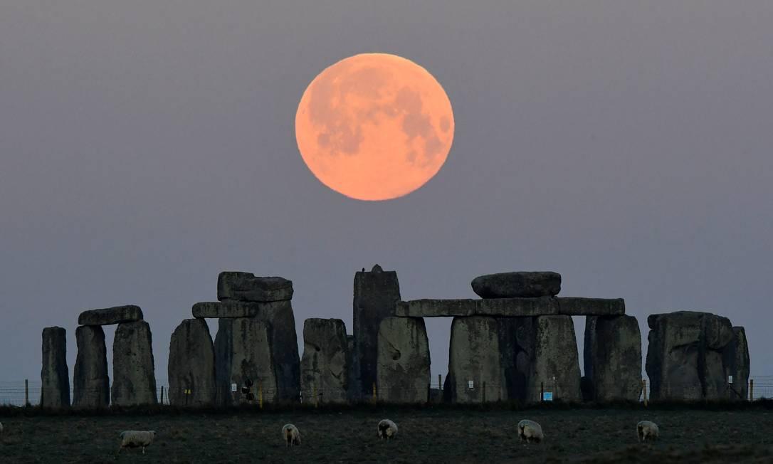 Ovelhas pastam sob a super pink moon, que se põe atrás do círculo de pedra de Stonehenge, perto de Amesbury, Inglaterra Foto: TOBY MELVILLE / REUTERS