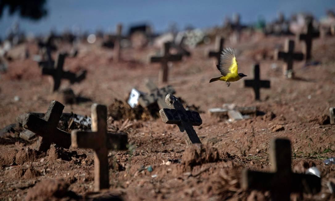 Túmulos no Cemitério São Francisco Xavier, na Zona Norte do Rio. Foto: MAURO PIMENTEL / AFP