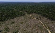 Abril de 2021 bateu recorde de desmatamento para o mês, segundo dados do Deter Foto: Infoglobo