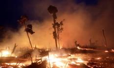 Fogo arrasa fazenda em Machadinho do Oeste, em Rondônia: grileiros queimam floresta para abrir área de pasto, que é mais valorizada do que a vegetação nativa Foto: Ricardo Moraes/Reuters/2-9-2019