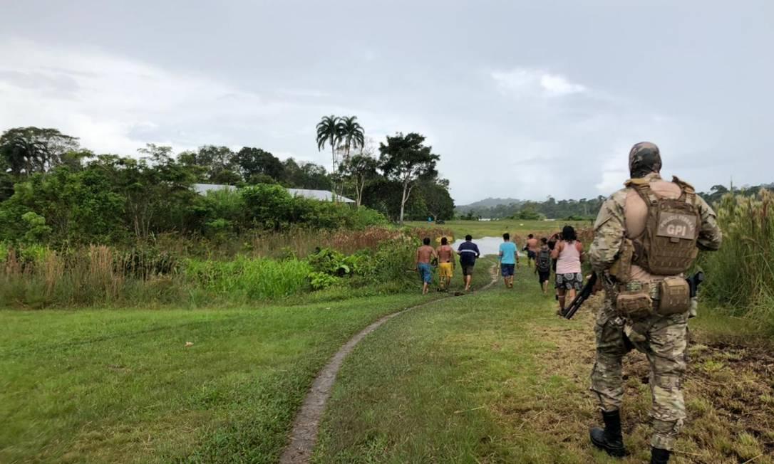 Ouro, cocaína e armas de guerra: a presença do PCC na terra indígena Yanomami Foto: Divulgação