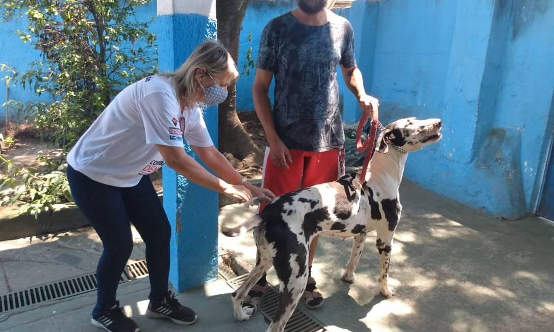 Postos de Caxias vacinam a partir de segunda Foto: Divulgação