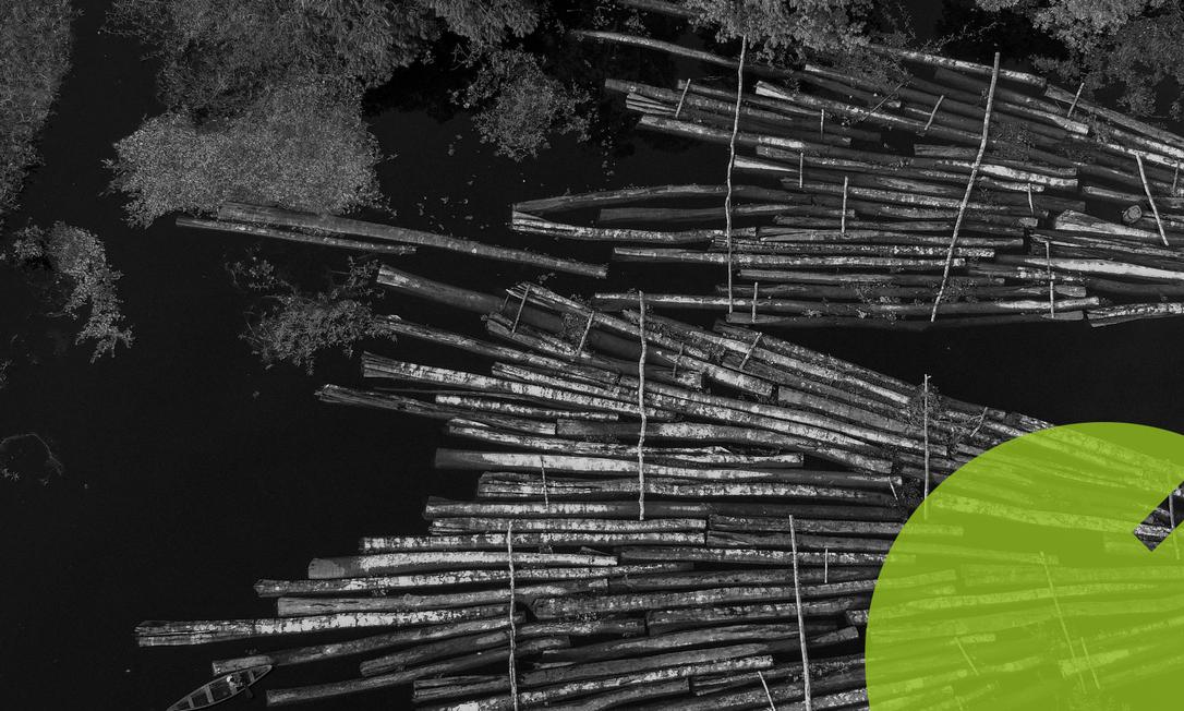 Madeira ilegal confiscada pela Polícia Militar em Manacapuru, no Amazonas; Brasil quer receber créditos da época do Protocolo de Kyoto, que tinha padrões considerados frouxos Foto: RICARDO OLIVEIRA/AFP/16-7-2020