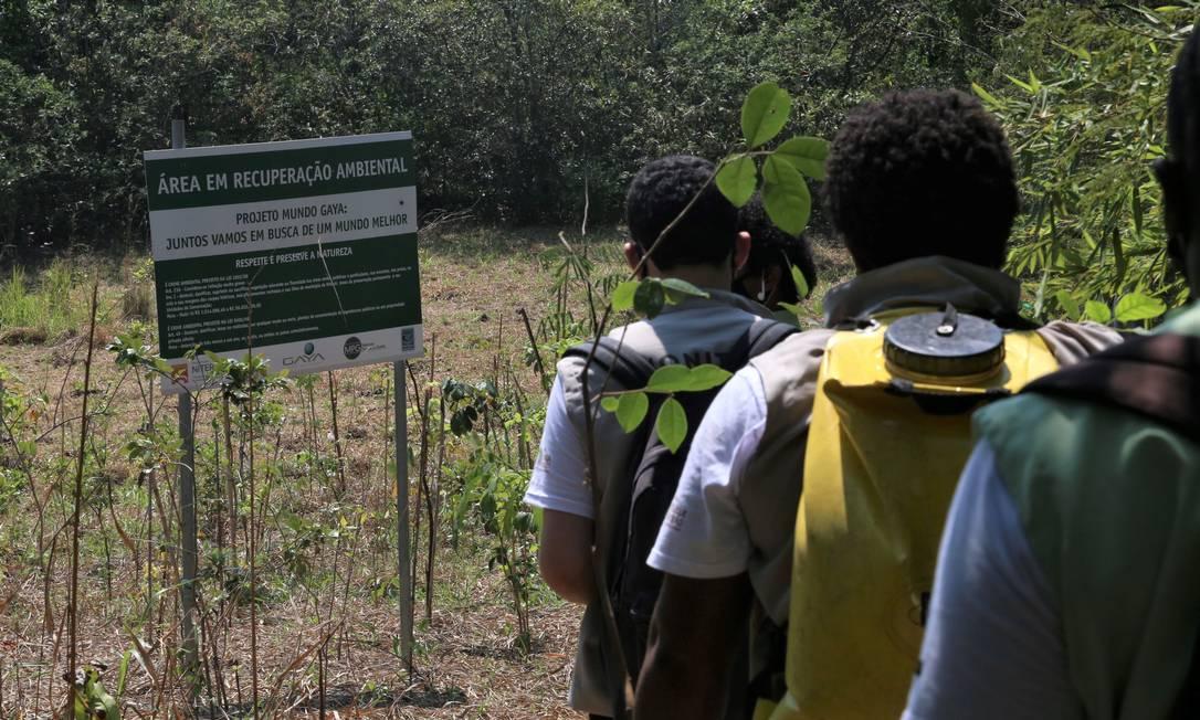Jovens durante atividade do programa EcoSocial, que promove educação ambiental entre moradores de comunidades de Niterói Foto: Divulgação / Douglas Macedo