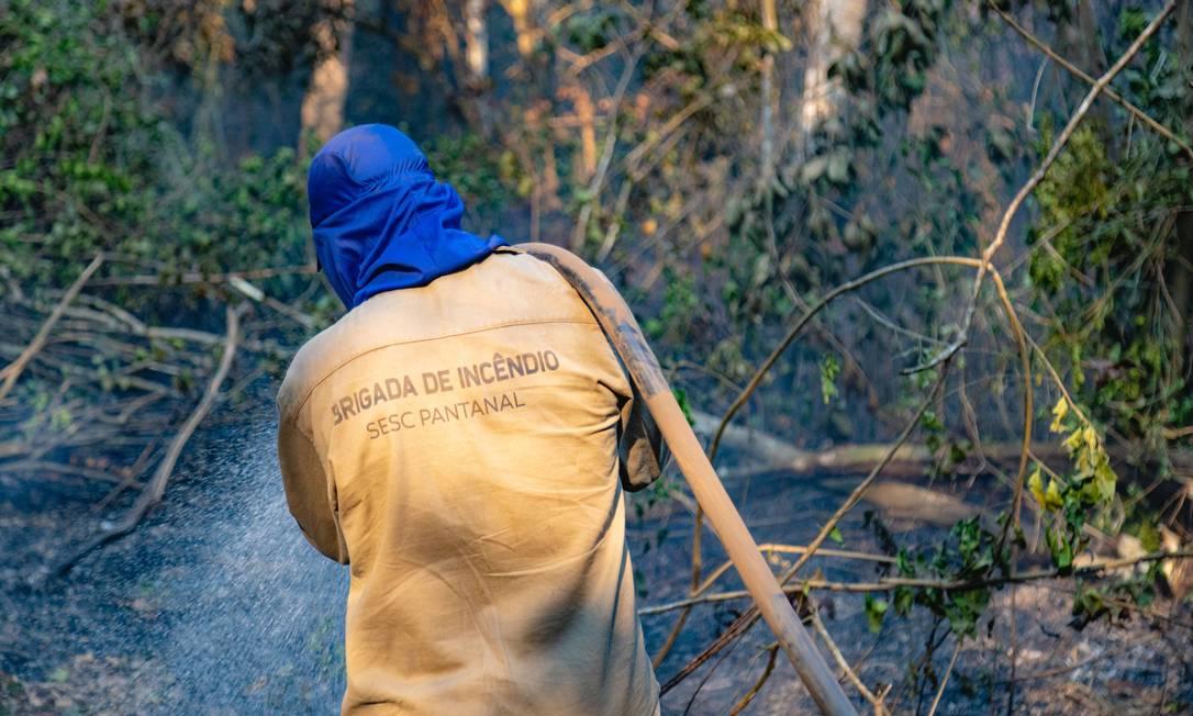 Com carga horária de 12 horas, a capacitação dos 40 brigadistas faz parte do planejamento do Comitê Interno de Combate e Prevenção a Incêndios Florestais do Sesc Pantanal. Foto: Jeferson Prado / Sesc Pantanal