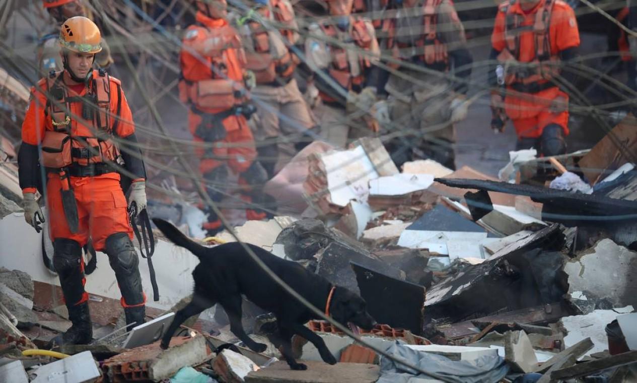 Bombeiros atuam com ajuda de cães farejadores na busca pelas vítimas Foto: RICARDO MORAES / REUTERS