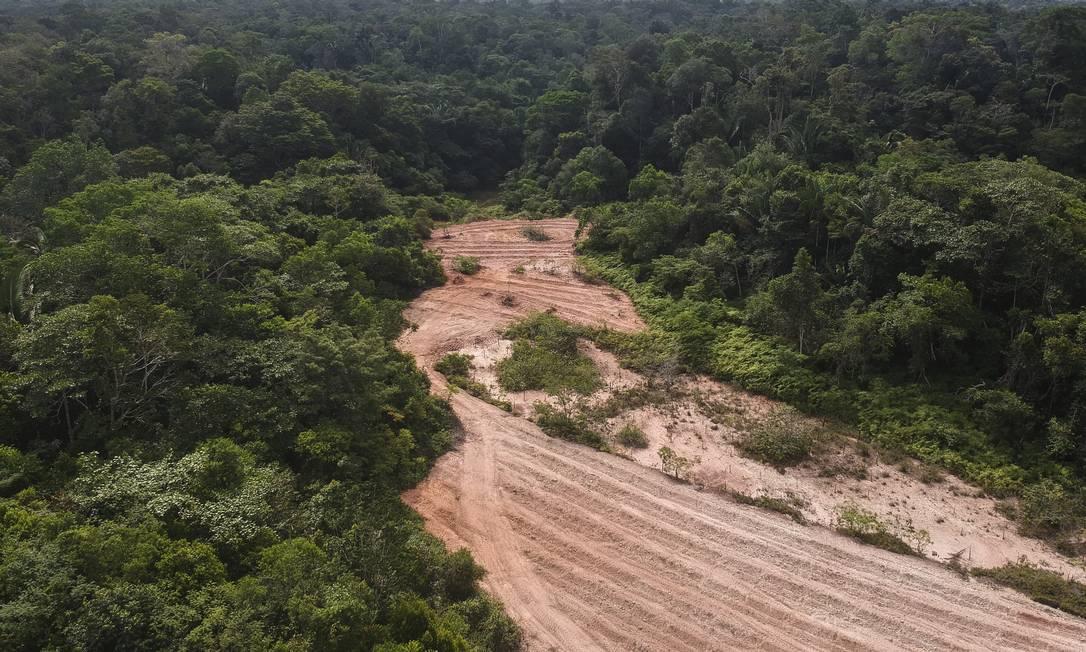 Imagem ilustrativa: Foto de 2019 mostra a BR-319, que liga Porto Velho a Manaus, com desmatamento a beira da estrada Foto: Gabriel Monteiro / Agência O Globo