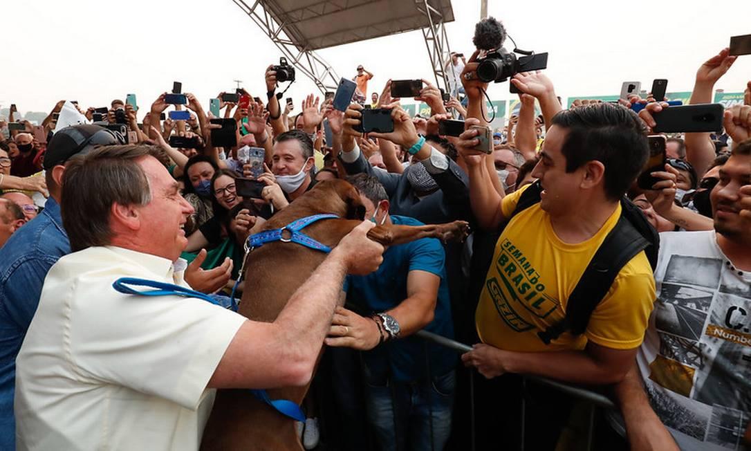 Bolsonaro segura um cachorro em meio a aglomeração em Sinop (MT) Foto: Alan Santos/PR