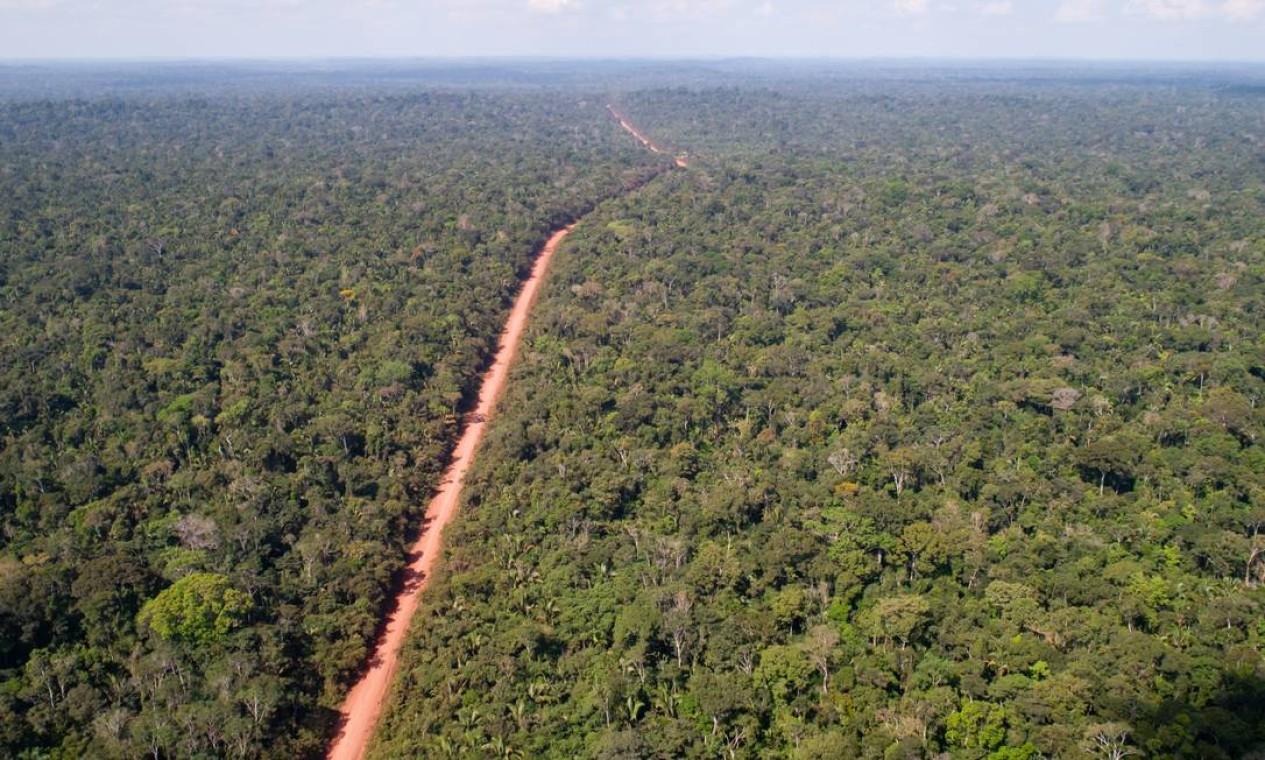 Rodovia Transamazônica, próximo a uma aldeia indígena. Segundo o Inpe, desmatamento na Amazônia cresceu 46% nos dois primeiros anos do governo Bolsonaro em relação ao período entre 2017 e 2018 Foto: Brenno Carvalho / Agência O Globo