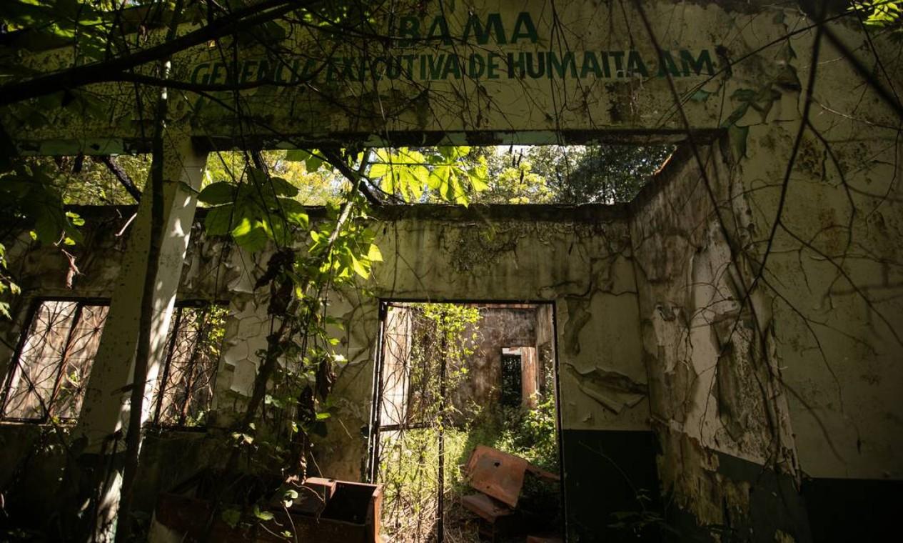 Com desmonte da fiscalização, número de multas aplicadas pelo Ibama em operações na Amazônia caiu 44% nos dois primeiros anos da gestão Ricardo Salles Foto: Brenno Carvalho / Agência O Globo