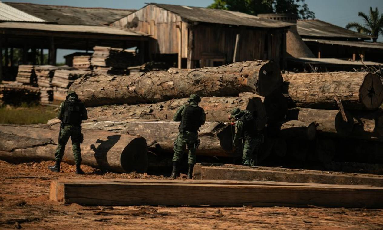 Operação da Polícia Federal em madereira na comunidade conhecida como Realidade, próxima a Humaitá Foto: Brenno Carvalho / Agência O Globo