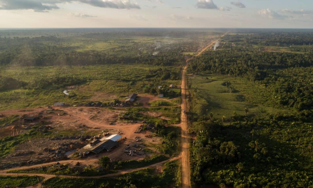 Madeireira em area desmatada próxima à BR 319 no estado do Amazonas Foto: Brenno Carvalho / Agência O Globo