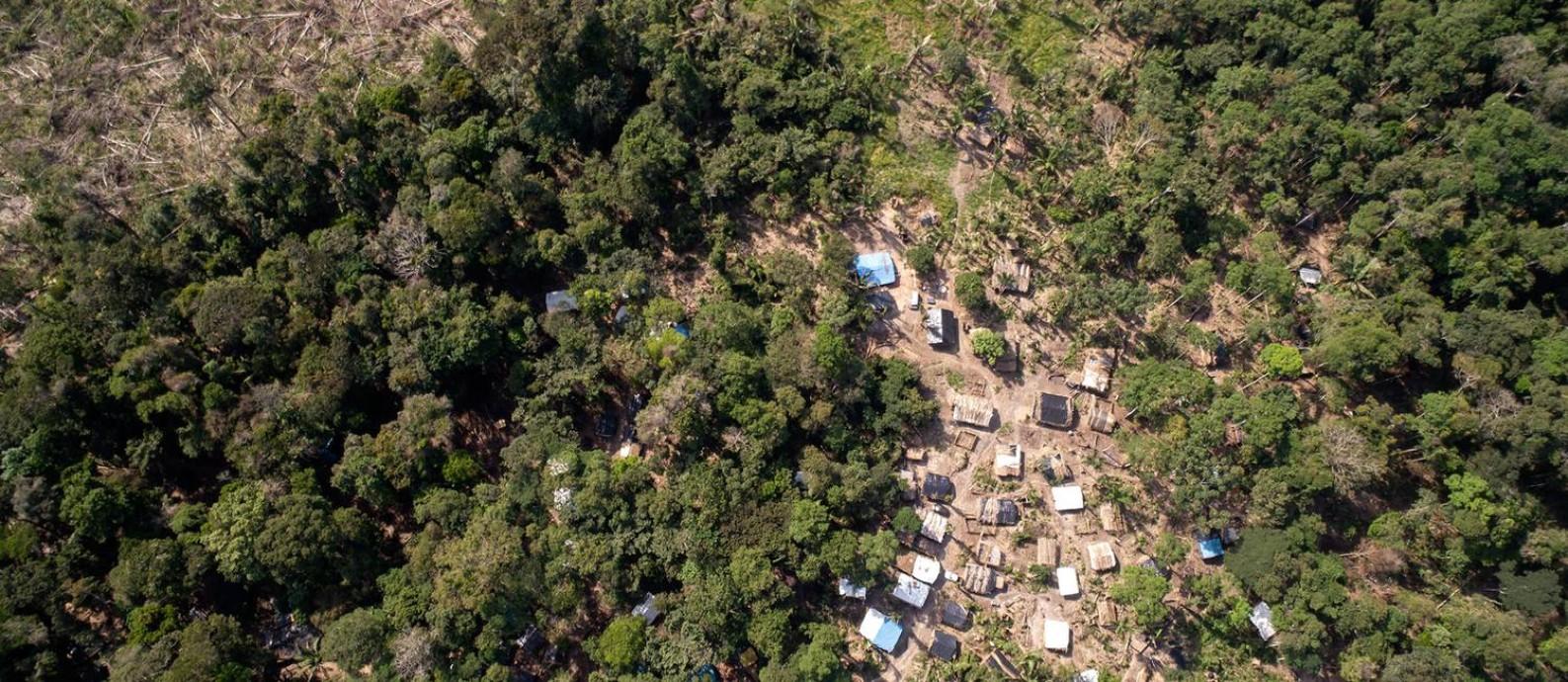 Floresta Nacional de Jacundá em Rondônia, próximo a Porto Velho, tem um assentamento em crescimento. Foto: Brenno Carvalho / Agência O Globo.