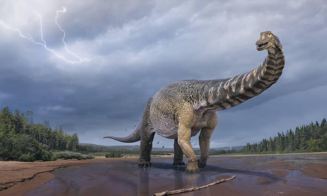 Cientistas da Austrália reveleram detalhes sobre o Australotitan, o maior dinossauro já descoberto no país Foto: Divulgação/Museu de História Natural de Eromanga