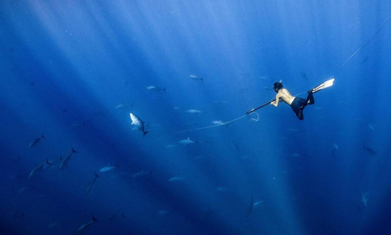 A foto do mergulhador na pesca artesanal de atum na Costa Rica, feita pelo britânico Henley Spiers, foi finalista na categoria O Oceano: Vida e Meios de Subsistência, do concurso fotográfico World Oceans Day Photo Competition 2021, promovido pela ONU Foto: Henley Spiers / Divulgação