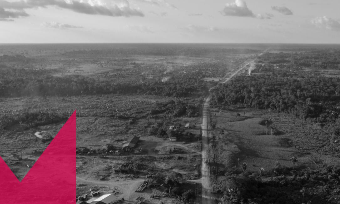 Madeireira ocupa área desmatada próxima à BR-319, no Amazonas Foto: Brenno Carvalho / Agência O Globo