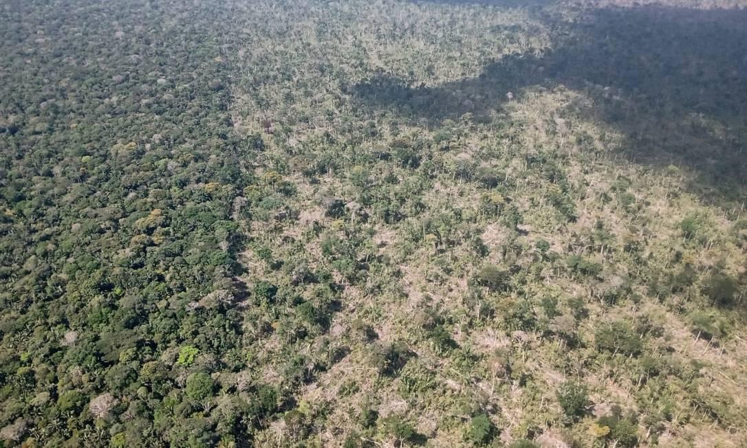 Imagem área da operação que desmobilizou acampamento de desmtadores e aplicou multas a invasores da Terra Indígena Piripkura Foto: Divulgação