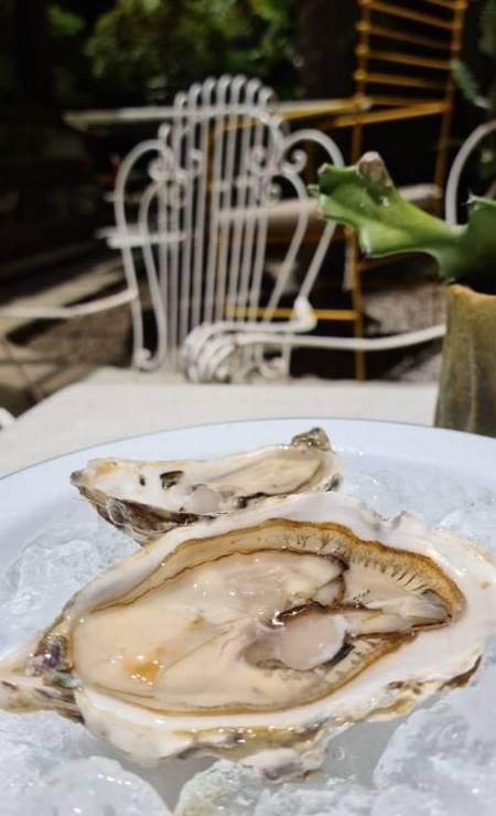 A noite das ostras e vinhos às quintas está de volta ao Coltivi Foto: Divulgação