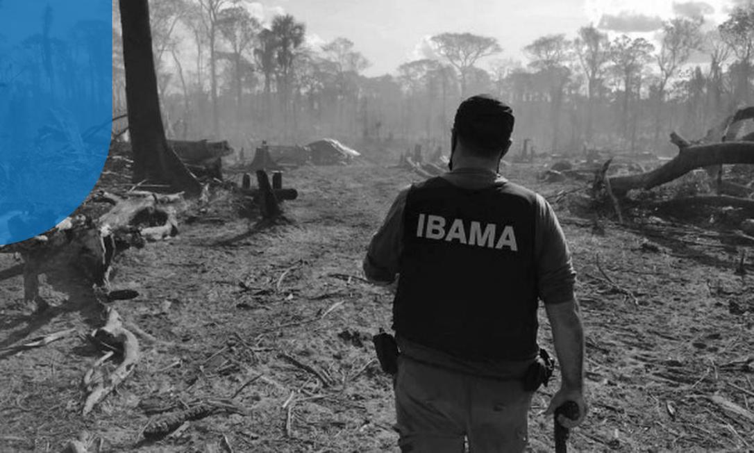 Agente do Ibama faz operação contra o desmatamento na Terra Indígena Piripkura, no Mato Grosso Foto: Divulgação