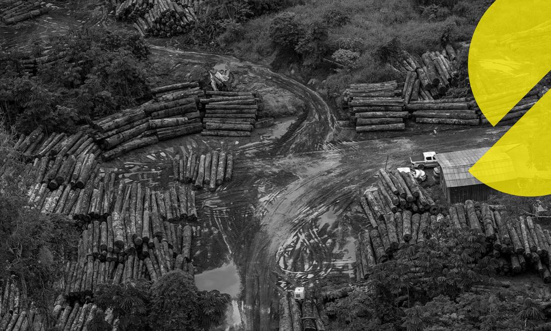 Vista aérea do desmatamento na Amazônia Foto: Ibama