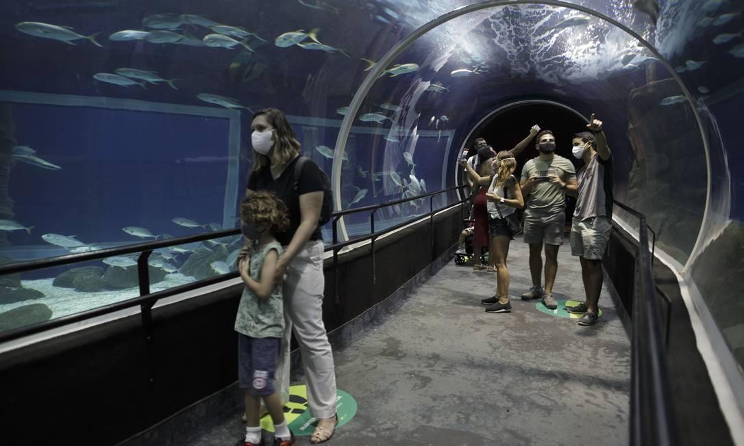 AquaRio e BioParque estão com ingressos em promoção Foto: Márcia Foletto / Agência O Globo