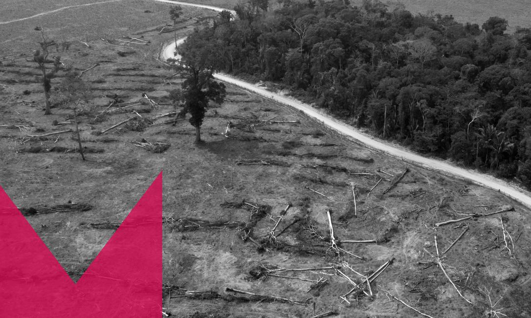 Foto aérea de arquivo tirada em agosto de 2019 de áreas queimadas da Floresta Amazônica, próximo a Porto Velho, estado de Rondônia, Brasil Foto: CARLOS FABAL/ AFP