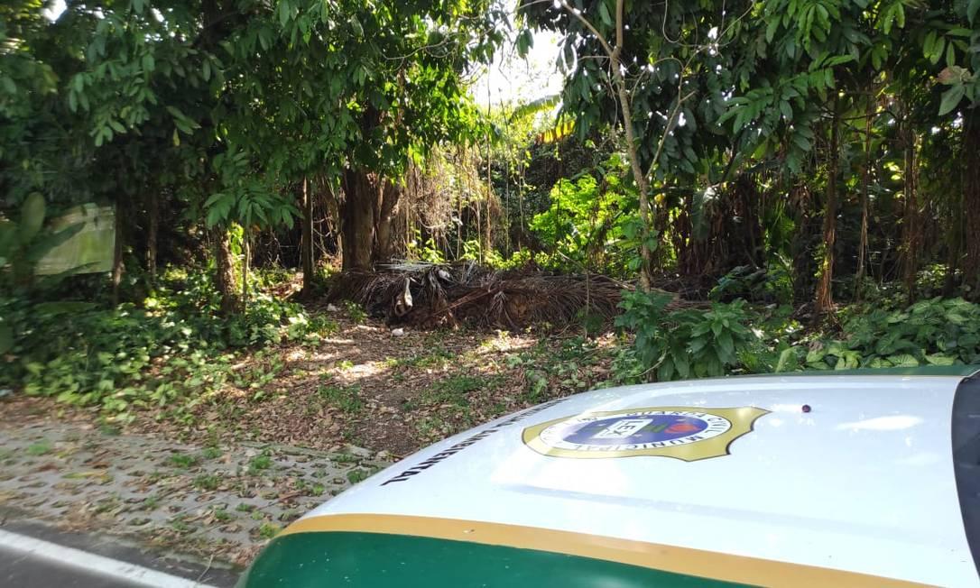 Guardas foram ao local após denúncia Foto: Divulgação / Prefeitura de Niterói