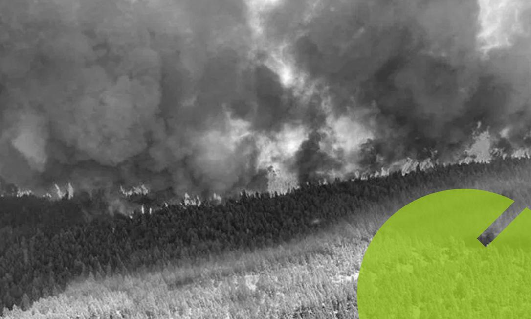 Incêndio em floresta no Canadá: país passa por onda de calor que levou a temperatura a 45 graus Celsius Foto: BC Wildfire Service/Via AFP