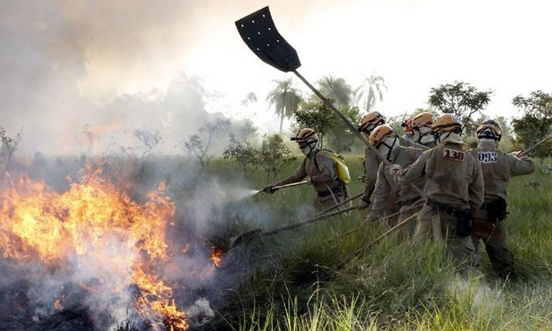 Imagem ilustrativa: trabalho dos brigadistas no combate a incêndios no Pantanal Foto: GOV-MS/Reprodução