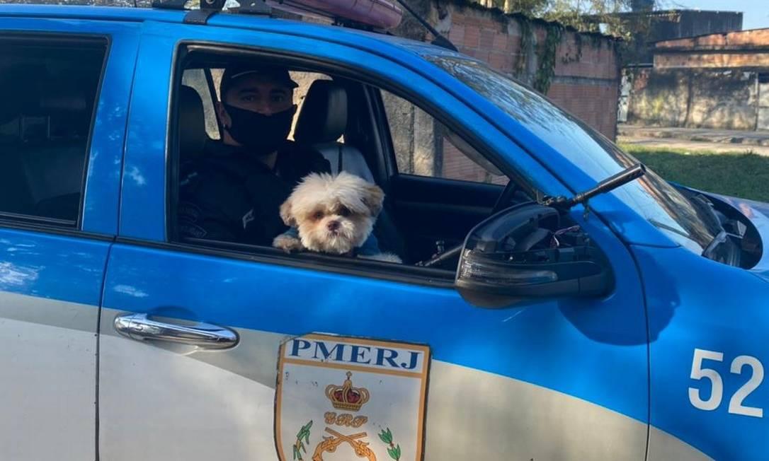 Billy na viatura da PM, após ser encontrado por agentes do batalhao de Duque de Caxias Foto: Polícia Militar / Divulgação
