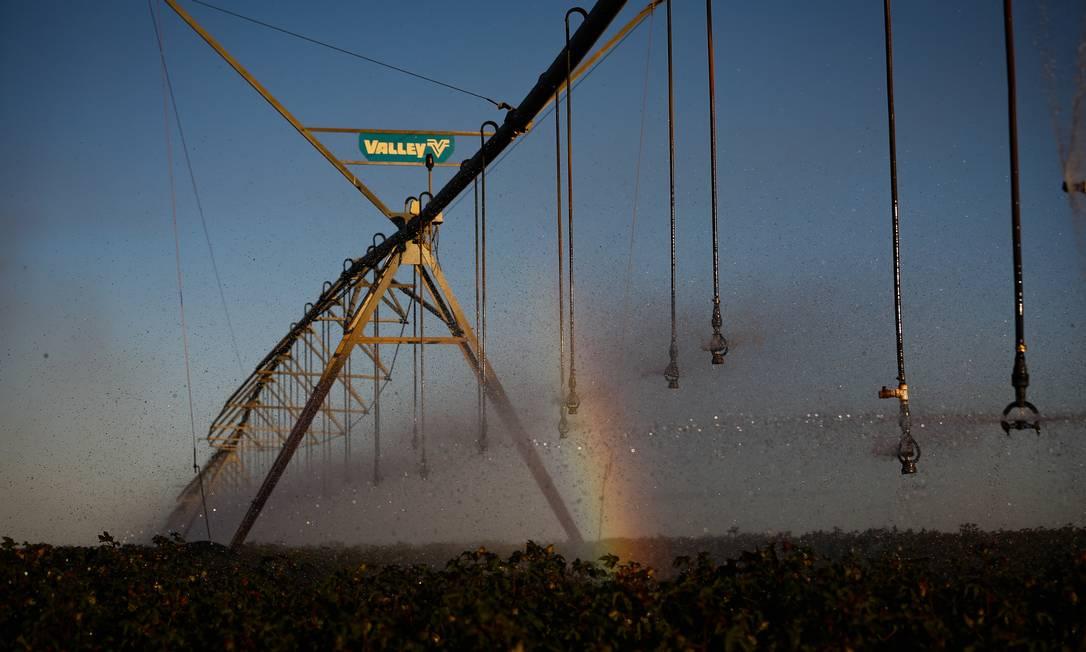 Fazenda Dois Irmãos, no Oeste da Bahia: produtores investem em irrigação, maquinário e tecnologia para adaptar a terra do Matopiba e elevar produtividade Foto: Pablo Jacob / Agência O Globo
