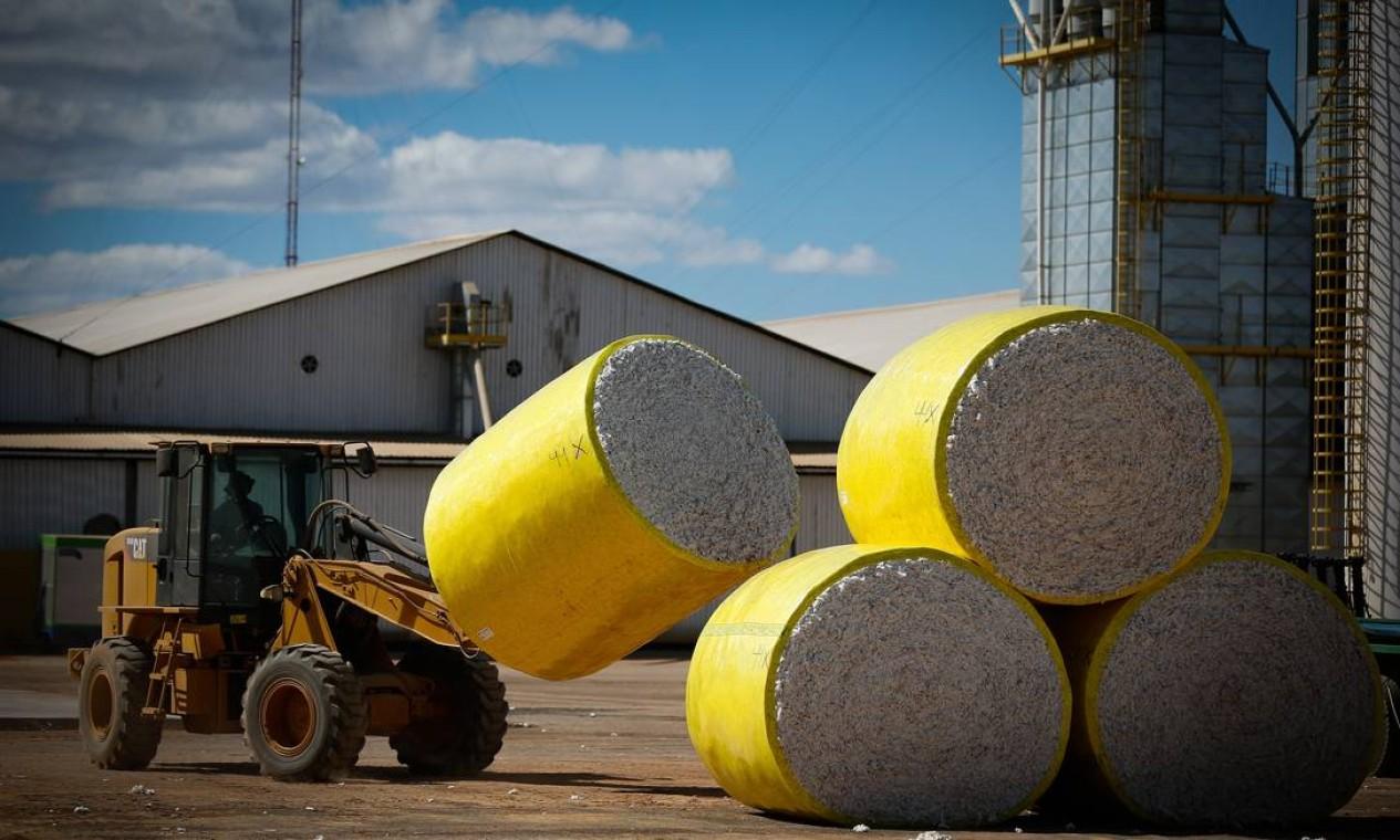 Processamento de algodão na Fazenda Eliane, em São Desidério, no Oeste da Bahia Foto: Pablo Jacob / Agência O Globo