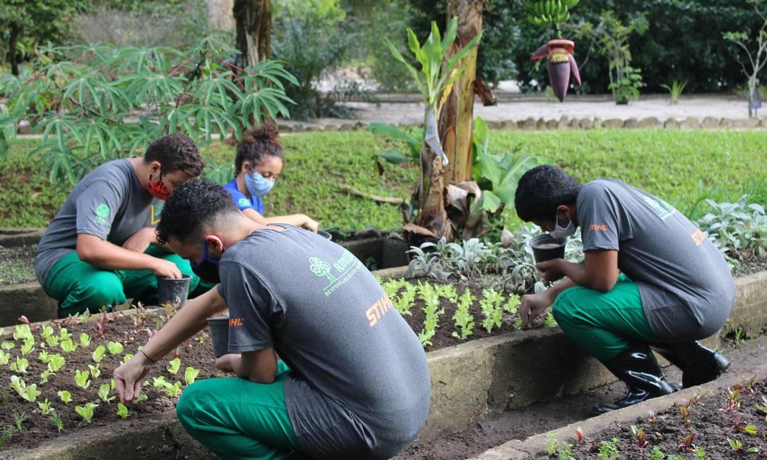 Prática. Alunos da capacitação em Jardinagem com ênfase em Agroecologia Foto: Divulgação
