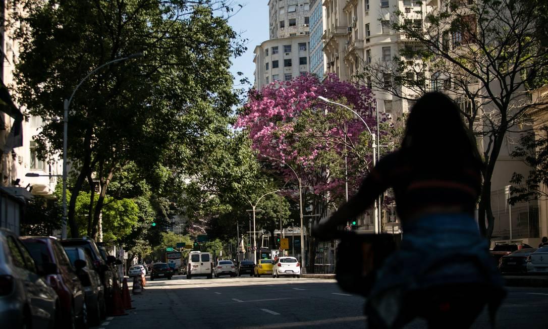 A Avenida Presidente Wilson, Centro do Rio Foto: Brenno Carvalho / Agência O Globo