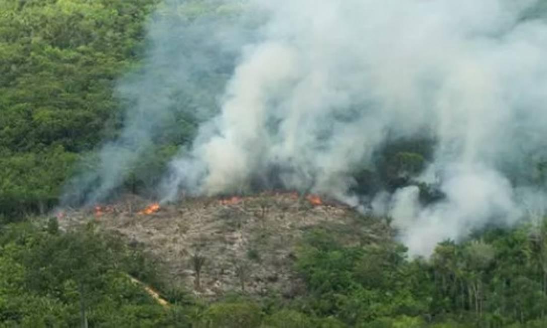 Queimada na Amazônia: projeto facilita regularização de propriedades no interior de florestas públicas não destinadas, que passam por seguidos processos de incêndios e desmatamento Foto: Antonio Scorza