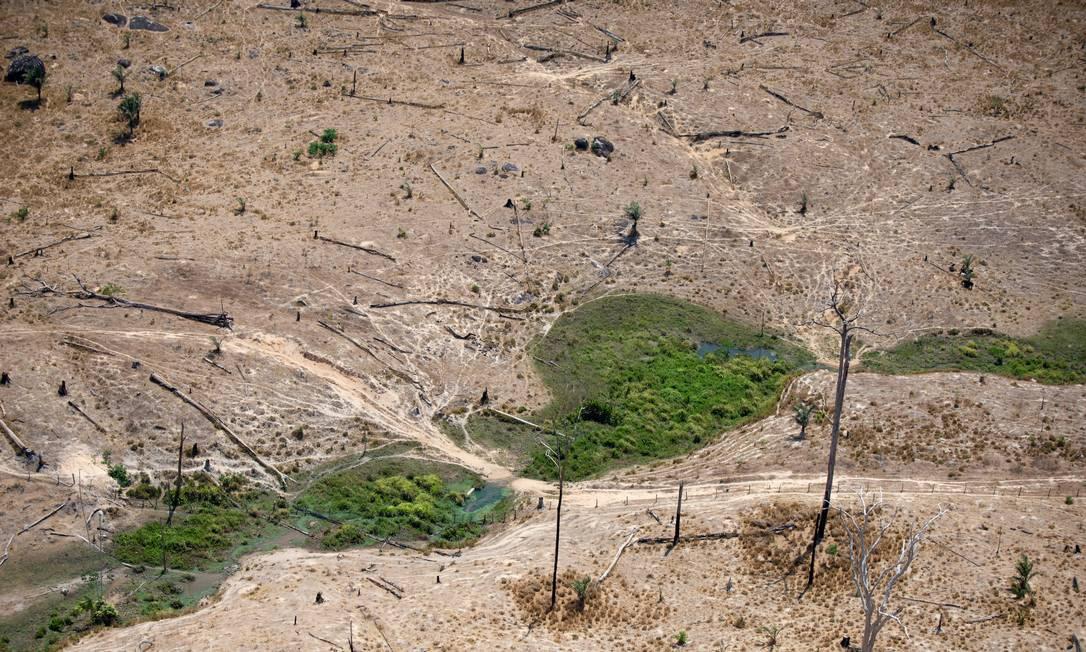 Área desmatada em Altamira, no Pará Foto: Christian Braga / Greenpeace / © Christian Braga / Greenpeace