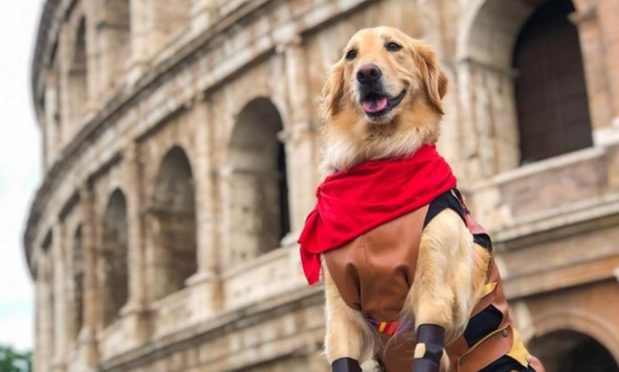 Lilo ao lado do Coliseu em Roma Foto: Reprodução Instagram