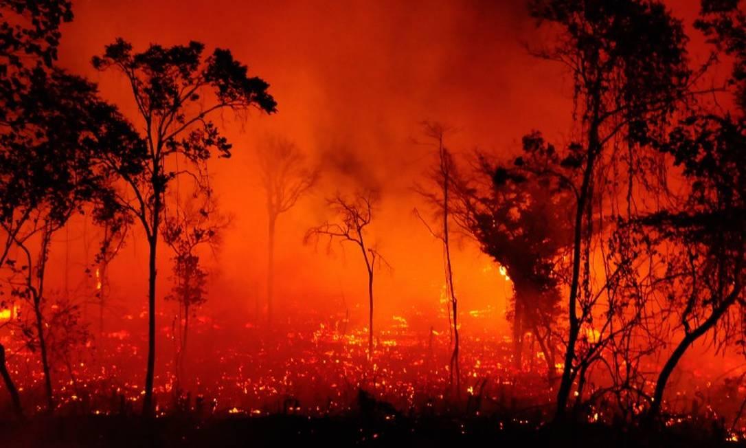 Queimada no Pantanal. Foto: Luiz Fernandes / WWF Foto: Agência O Globo