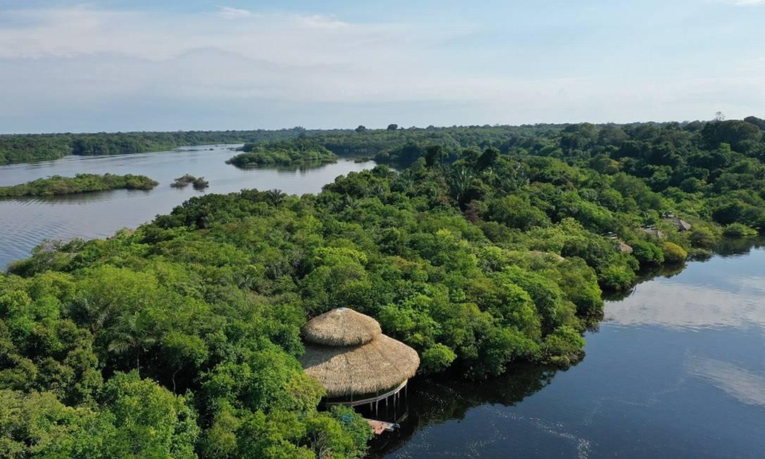 O restaurante-palafita do Juma Amazon Lodge, cercado pela floresta e à beira do Rio Juma, no interior do Amazonas Foto: Divulgação