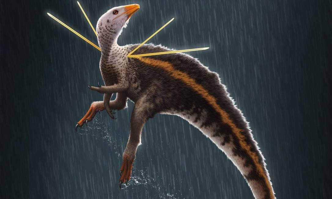 Ilustração do dinossauro Ubirajara jubatus Foto: Ilustração de Bob Nicholls / Paleocreations.com 2020