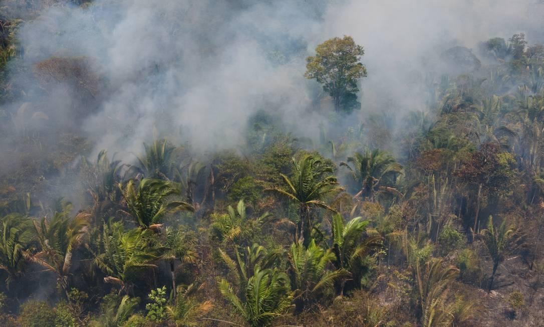 Queimada da Floresta Amazônica, na cidade de Porto Velho, no estado de Rondônia Foto: Fernando Souza/Fotoarena/Agência O Globo / Agência O Globo