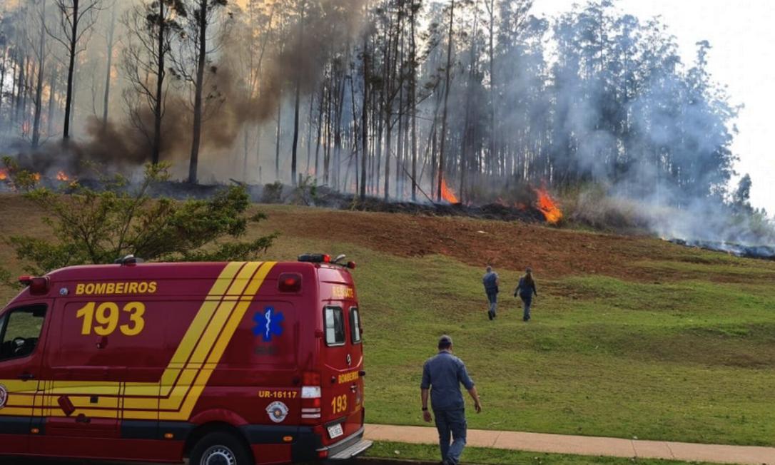 Avião caiu por volta das 9h em área de mata em Piracicaba Foto: Corpo de Bombeiros de SP / Divulgação