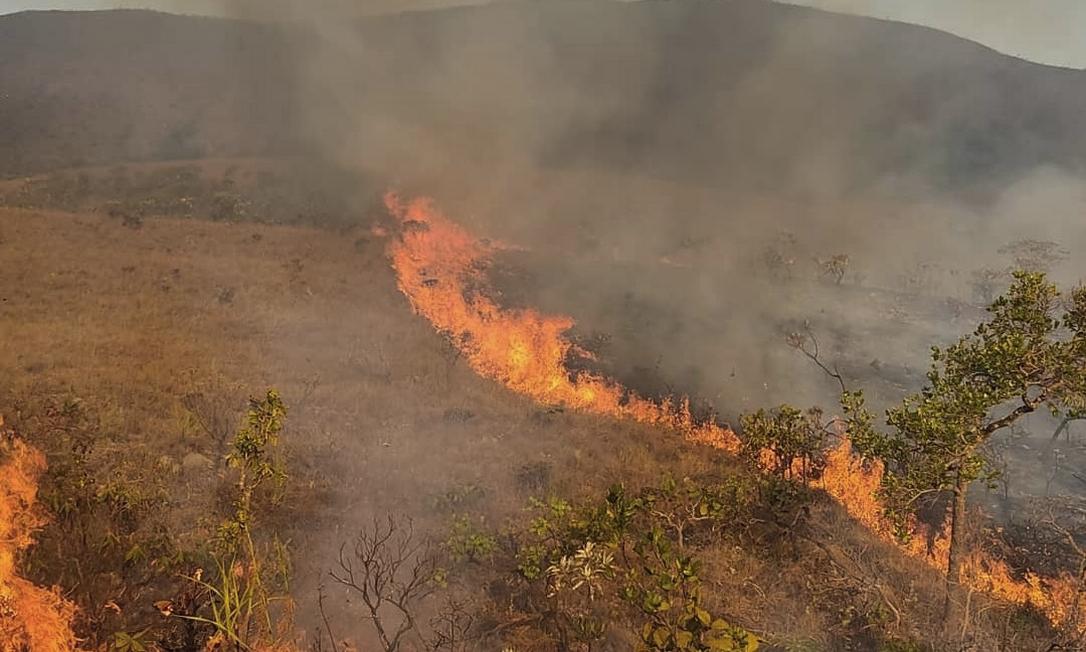 Incêndio na Chapada dos Veadeiros: terceiro dia de combate às chamas Foto: Rede contra Fogo / Reprodução